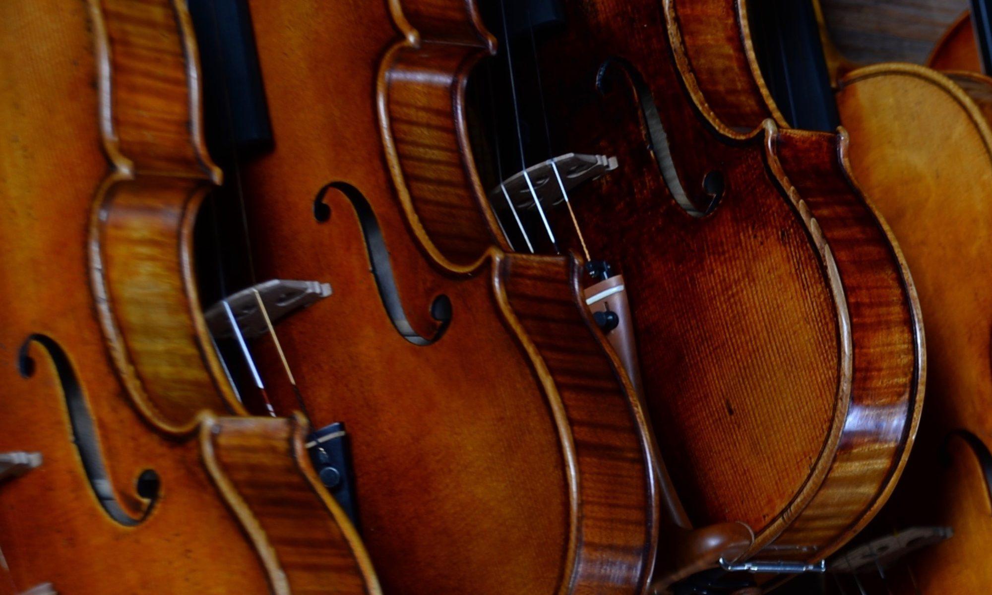 Geigenunterricht Mainz
